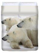 A Portrait Of A Polar Bear Mother Duvet Cover