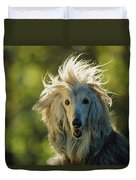 A Portrait Of An Afghan Hound Duvet Cover