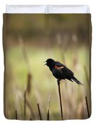 A Red-winged Blackbird Agelaius Duvet Cover