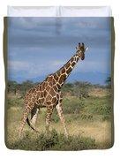 A Reticulated Giraffe On A Samburu Duvet Cover