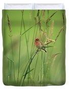 A Scarlet Grosbeak Perched On Grass Duvet Cover