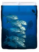 A School Of Bigeye Trevally, Papua New Duvet Cover