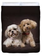 A Shihtzu And A Poodle On A Brown Duvet Cover