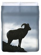 A Silhouetted Bighorn Sheep Standing Duvet Cover