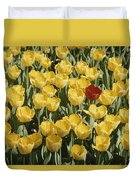 A Single Red Tulip Among Yellow Tulips Duvet Cover