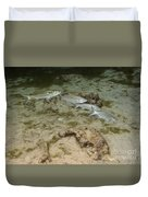 A Small School Of Grey Mullet Swim Duvet Cover
