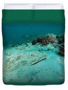 A Southern Stingray On The Sandy Bottom Duvet Cover