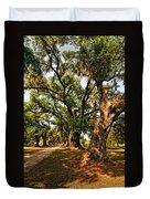 A Southern Stroll Duvet Cover by Steve Harrington