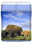 A Sow Bison Guides Her Calves On A Walk Duvet Cover