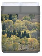 A Stand Of Aspen And Evergreen Trees Duvet Cover
