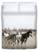 A Team Of Dogs Pull A Cart Duvet Cover