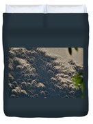 A Thousand Suns - Ring Of Fire Eclipse 2012 II Duvet Cover