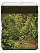 A Trail Cuts Through Ferns And Shrubs Duvet Cover