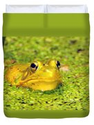 A Yellow Bullfrog Duvet Cover
