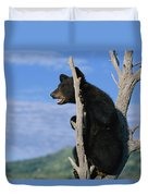 A Young American Black Bear Urus Duvet Cover
