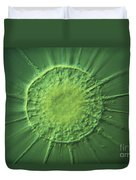 Actinophyrs Lm Duvet Cover