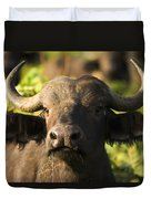 African Buffalo Syncerus Caffer Duvet Cover by Carson Ganci