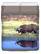African Cape Buffalo, Photographed At Duvet Cover by John Pitcher