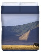 African Elephant In Ngorongoro Crater Duvet Cover