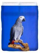 African Grey Parrot Duvet Cover