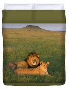 African Lion Panthera Leo Male Duvet Cover