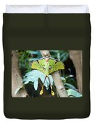 African Moon Moth 1 Duvet Cover