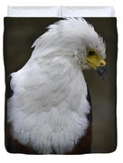 African Sea Eagle 5 Duvet Cover by Heiko Koehrer-Wagner