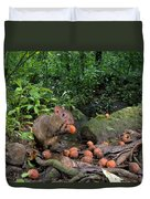 Agouti Dasyprocta Punctata Feeding Duvet Cover