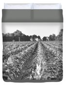 Agriculture- Corn 2 Duvet Cover