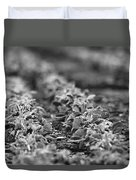 Agriculture- Soybeans 2 Duvet Cover