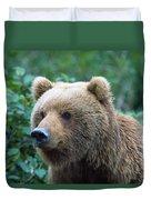 Alaskan Brown Bear Duvet Cover