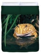 Albino Horned Frog Duvet Cover