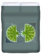 Algae Binary Fission Duvet Cover by M. I. Walker