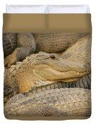 Alligators Duvet Cover