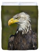 Almost There - Bald Eagle Duvet Cover