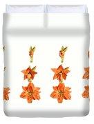 Amaryllis Blooming Duvet Cover