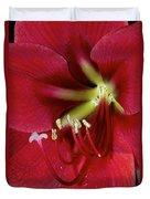 Amaryllis Flower Duvet Cover