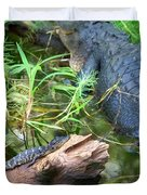 American Alligators Duvet Cover
