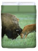 American Bison Cow And Calf Duvet Cover
