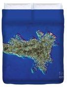 Amoeba Proteus Lm Duvet Cover