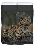An Alert Leopard Rests On A Fallen Tree Duvet Cover
