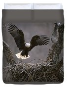 An American Bald Eagle Flies Duvet Cover