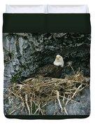 An American Bald Eagle Perches Duvet Cover