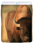 An American Bison In The Early Morning Duvet Cover