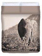 An Elephant Walking In The Bush Samburu Duvet Cover