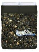 An Opisthobranch On Volcanic Sand Duvet Cover