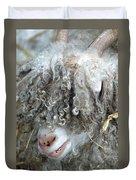 Angora Goat Duvet Cover