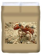 Ant Dorymyrmex Sp Workers Climbing Duvet Cover
