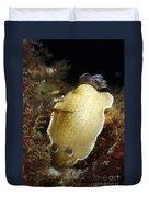 Aphelodoris Varia Sea Slug Nudibranch Duvet Cover