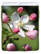 Apple Blossom Duvet Cover